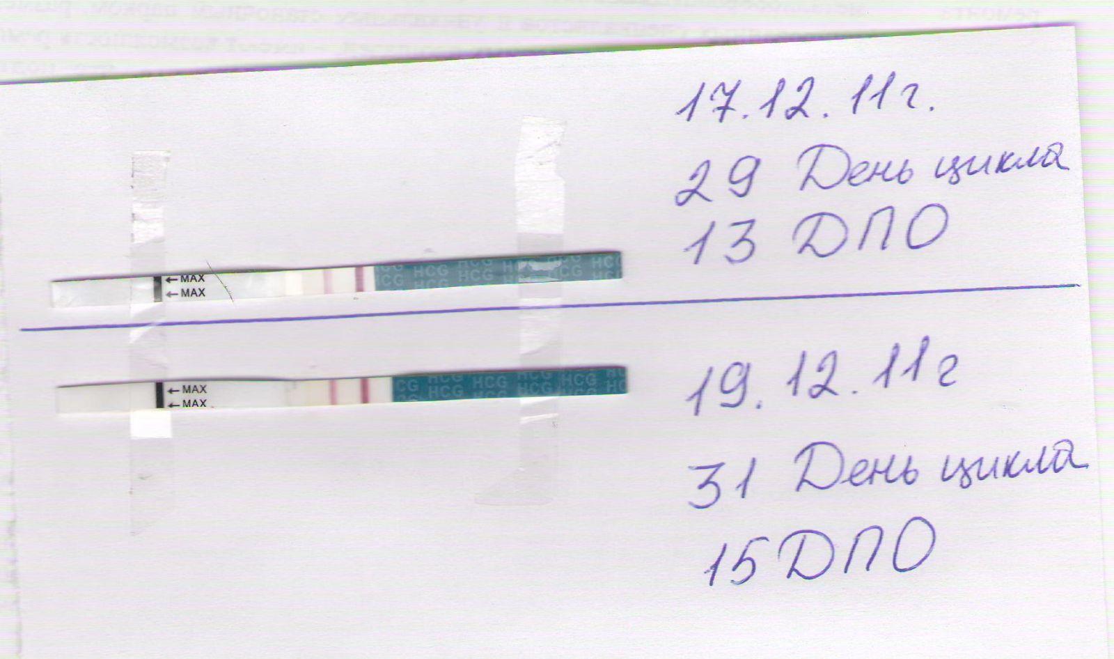 Пример теста на беременность
