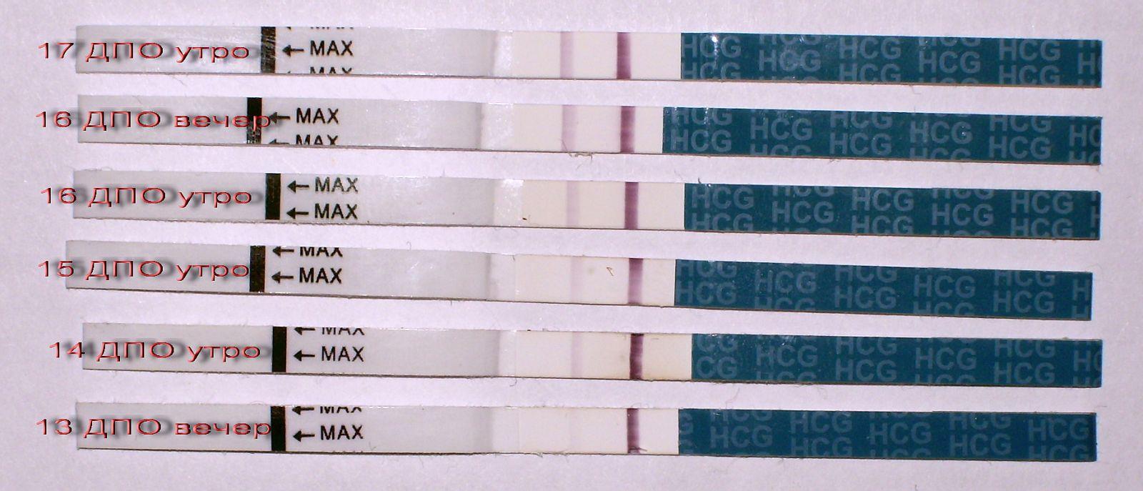 Как сделать тест на беременность на хгч