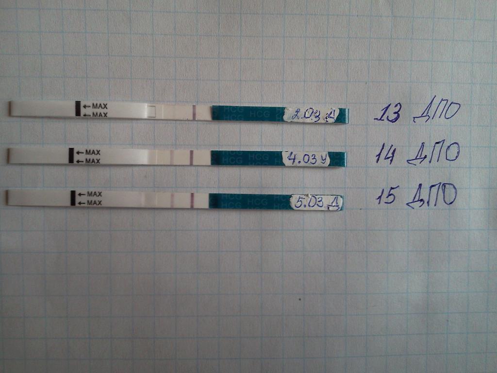 13 день после овуляции тест положительный пластинки
