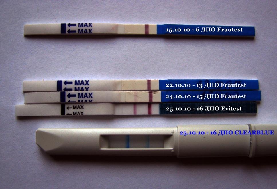должны быть показать тесты на беременность какие полоски должны быть кризиса или смерти