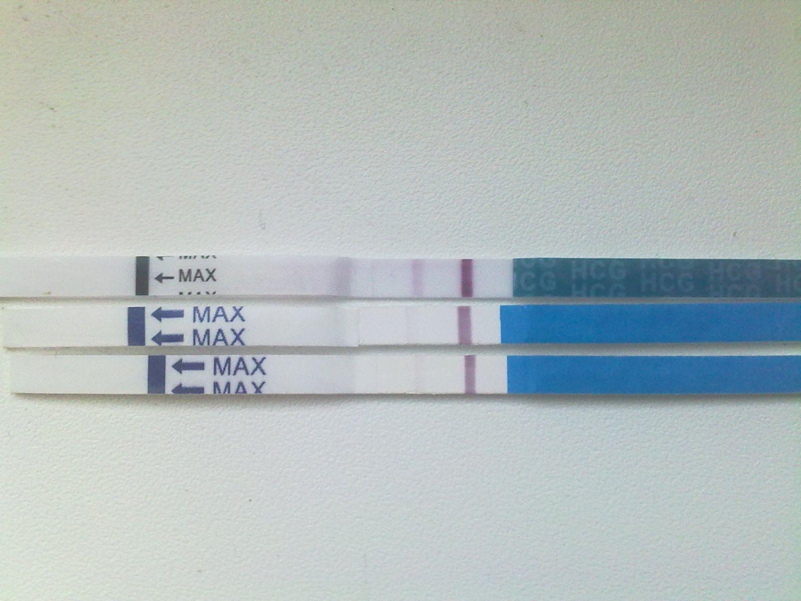 10 недель беременности-тесты отрицательные