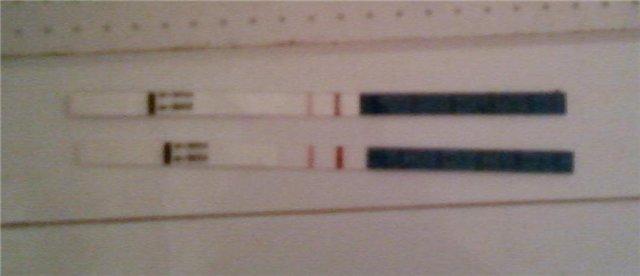 Какой тест на беременность можно считать положительным. Обязательно