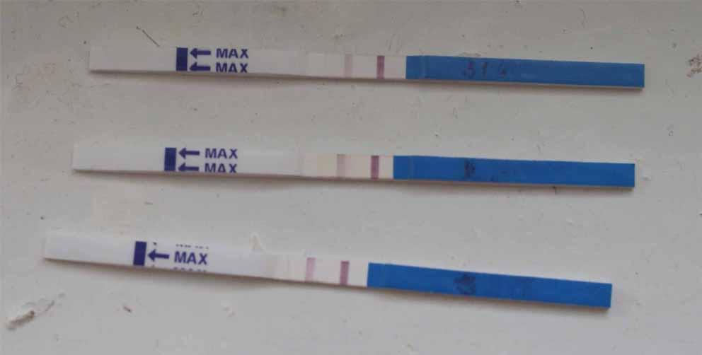 Почему у беременных не показывает тест на беременность 25