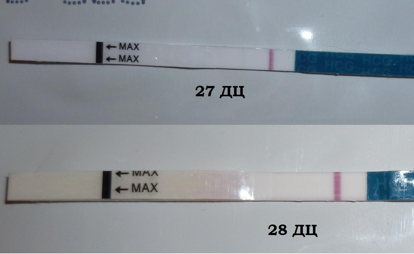 Ошибочный тест на беременность