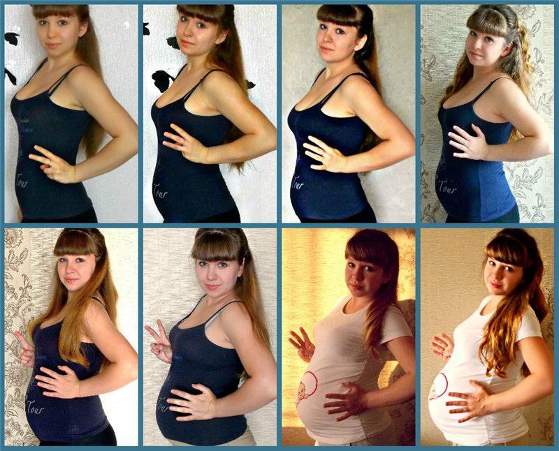 Фото как растет живот у беременных по месяцам фото 68
