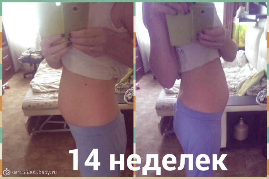 14 недель беременности размер живота