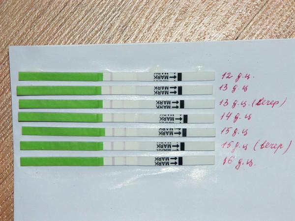 Тест на беременность при цикле 26 дней