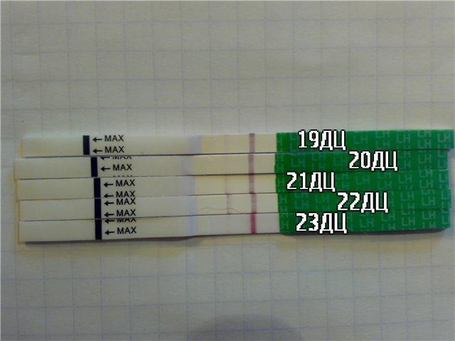 Эвиплан тест на овуляцию инструкция