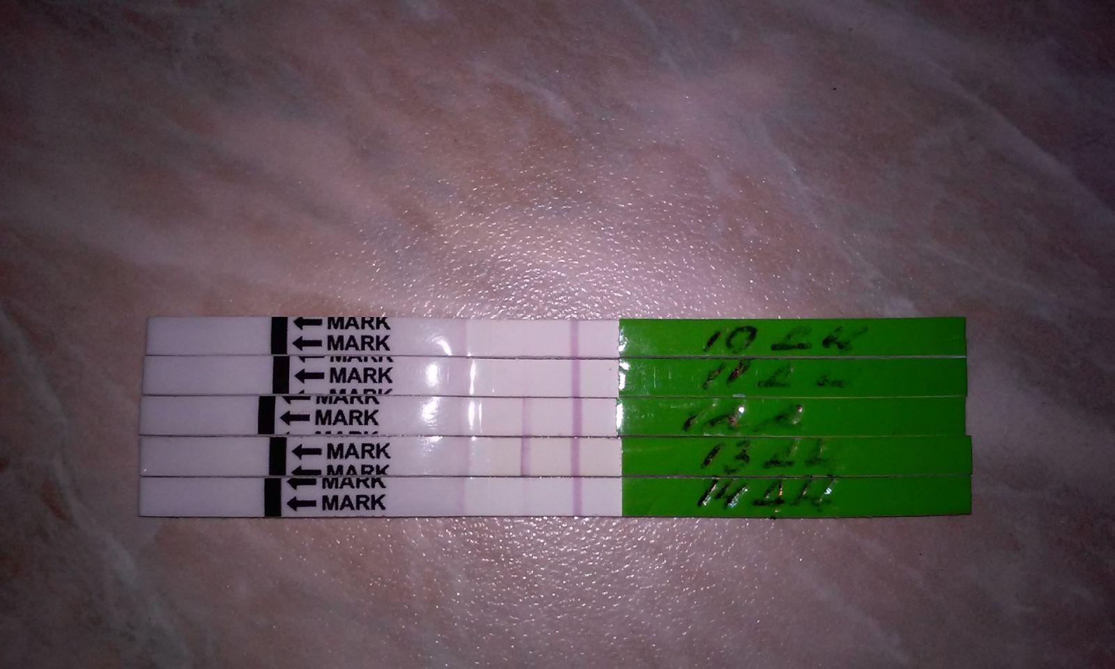 182 гинеколога Твери, 730 отзывов пациентов - ПроДокторов