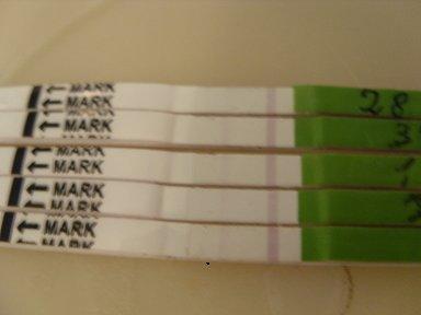 Тесты на овуляцию | материнство беременность, роды, питание.