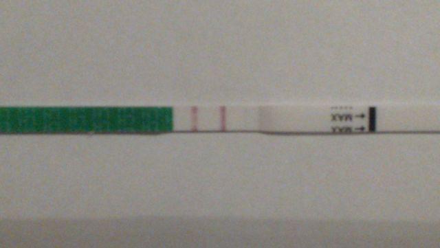 Тест не подтверждал беременности