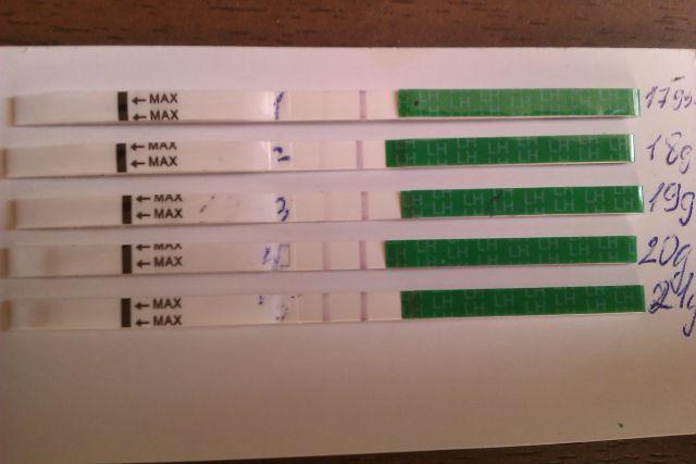 Тест на овуляцию не показывает 2 полоски - aa2