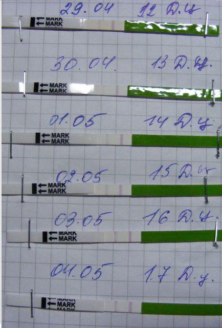 Тест на овуляцию что означает слабая полоска - 83a88
