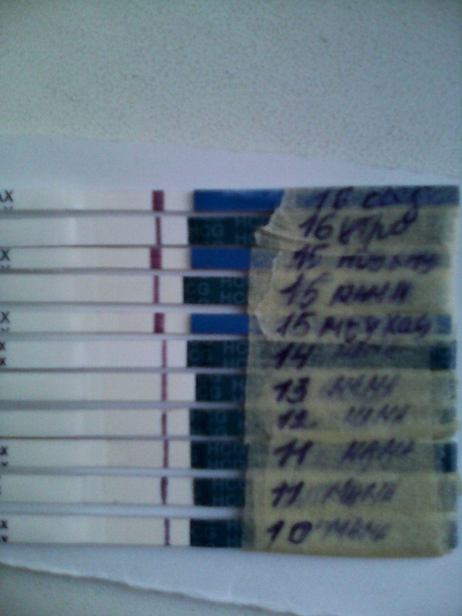 нашем интернет-магазине 3-й день задержки тест отрицательный функциям термобелье