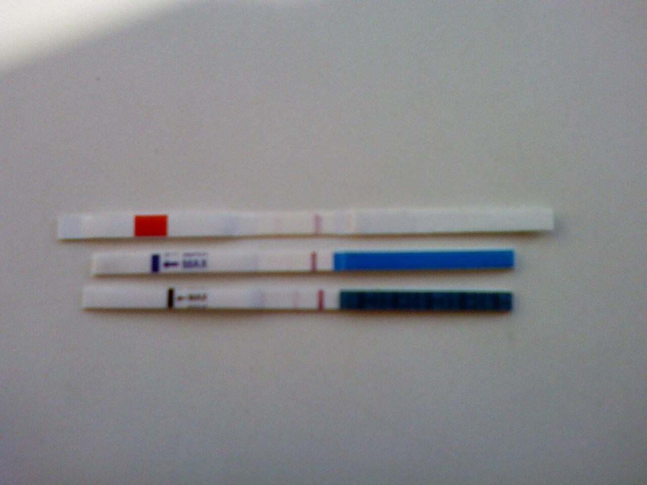 Обманывает ли тест на беременность