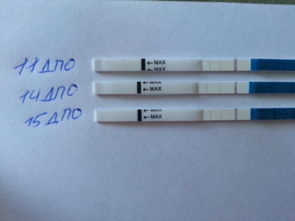 тест на беременность нет динамики все ДЕТСКИЕ