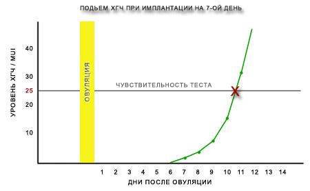 рост гормона ХГЧ
