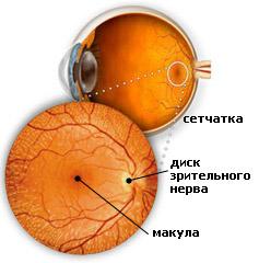 Как сохранить зрение во время беременности?