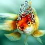 Foster.  Золотая рыбка была выведена в Китае более 1500 лет назад, где разводилась в прудах и садовых водоемах в...