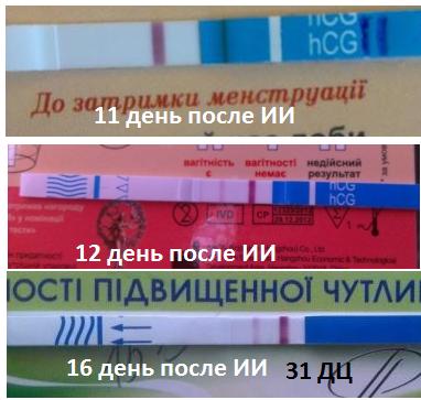 11,12, 16 день после ИИ