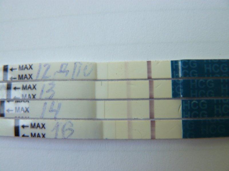EVI тесты на 12, 13, 14, 16 ДПО