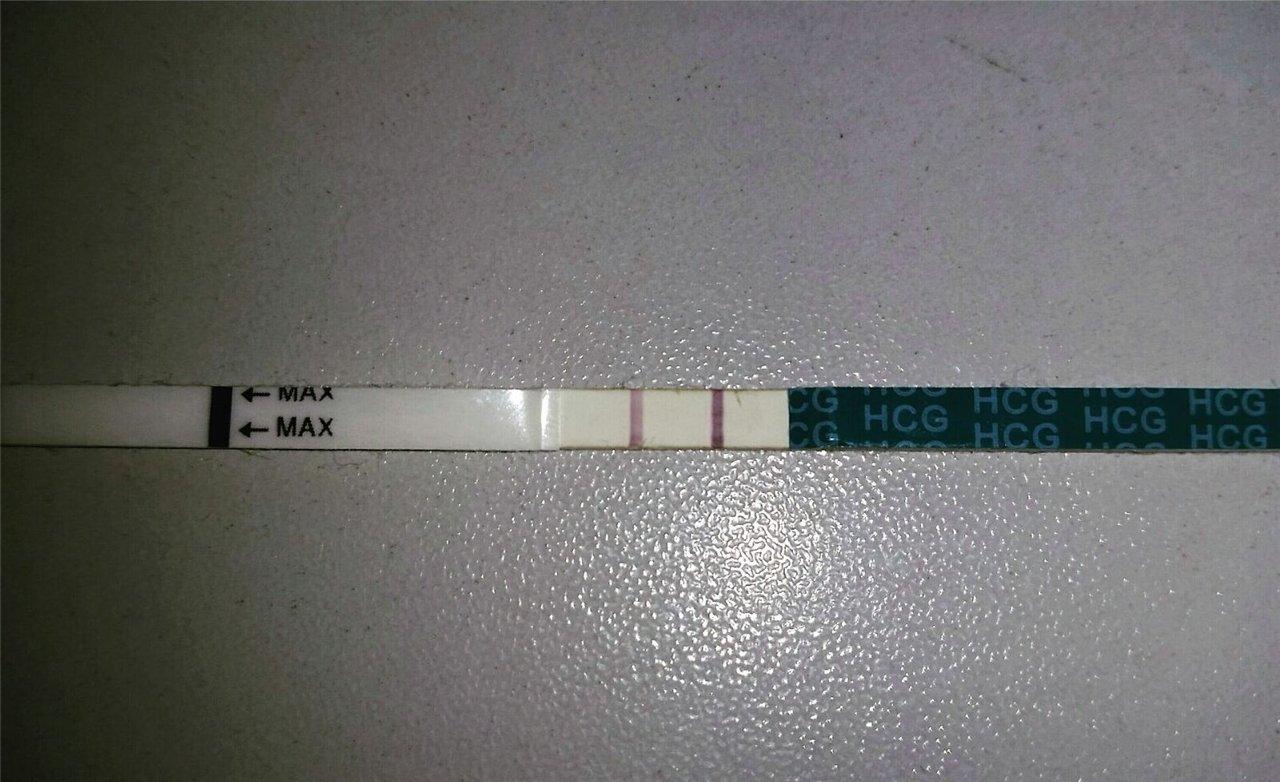 Мой тестик на 14 ДПО
