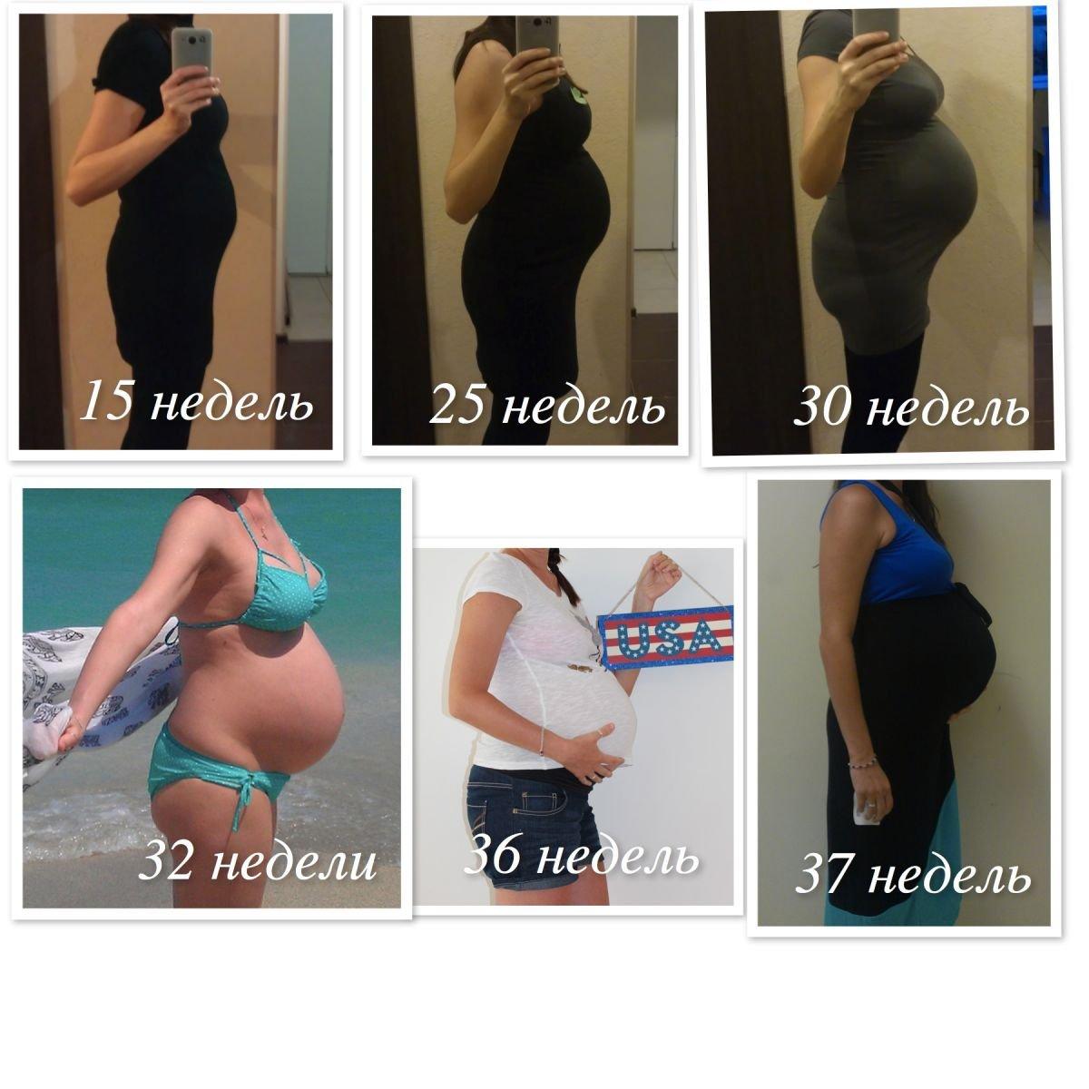 мой пузорост 15-37 недель