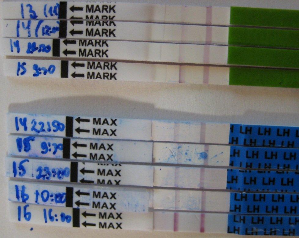 тесты на О 13-16 ДЦ (МЦ 32-33)