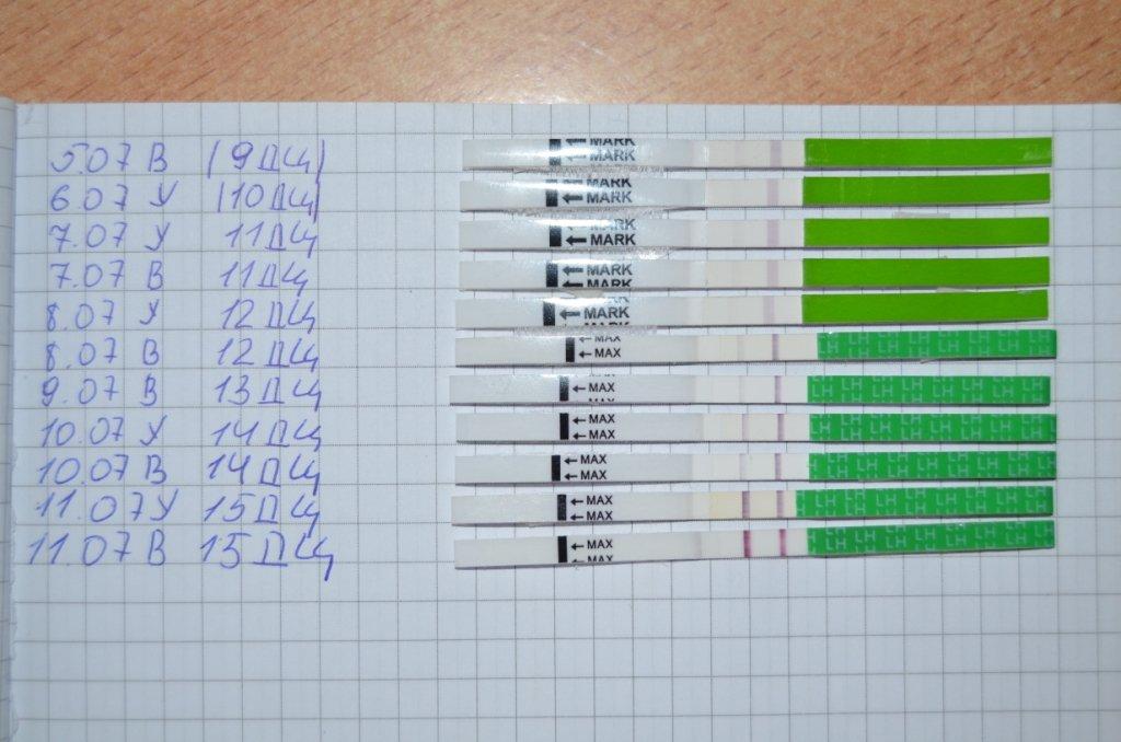 Картинки фото тест на овуляцию