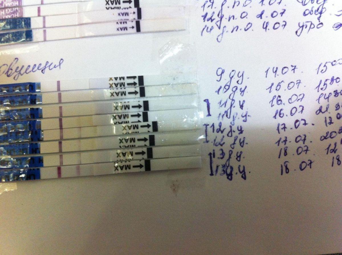 Девочки, посмотрите мои тесты на овуляцию с 9 дня по13. Делаю в первый раз!