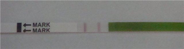 Мой тестик на О 21 дц