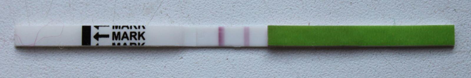 тест ovuplan. положительный???