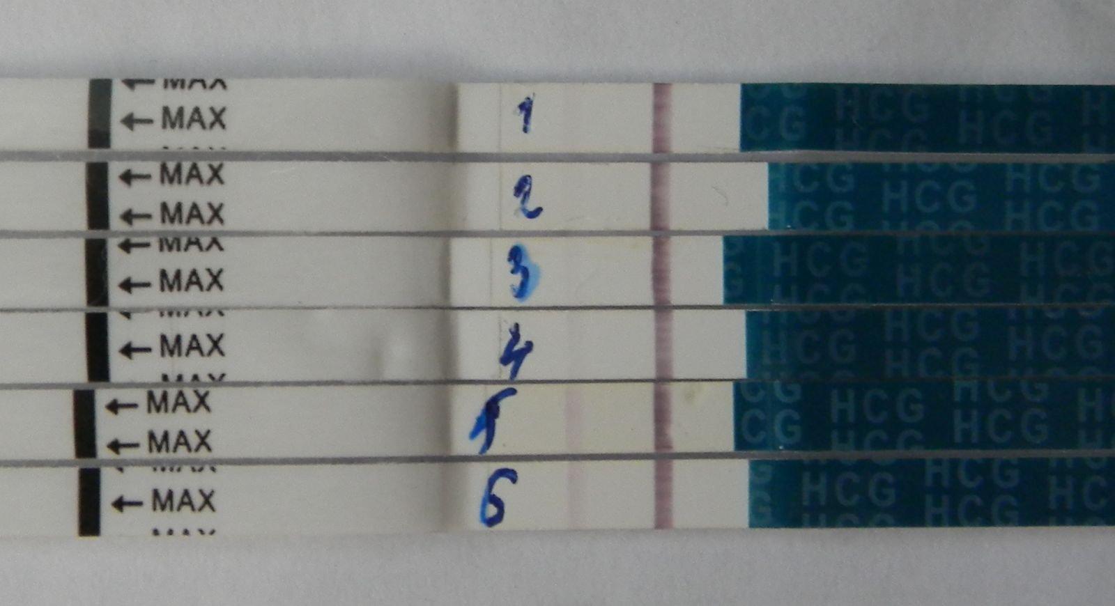 Динамика тестов