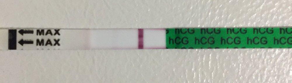 FDAFD46A-948F-4C5B-85EC-B486EC04839E.jpeg