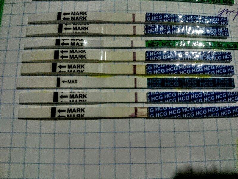 Тесты 13 дпо.JPG
