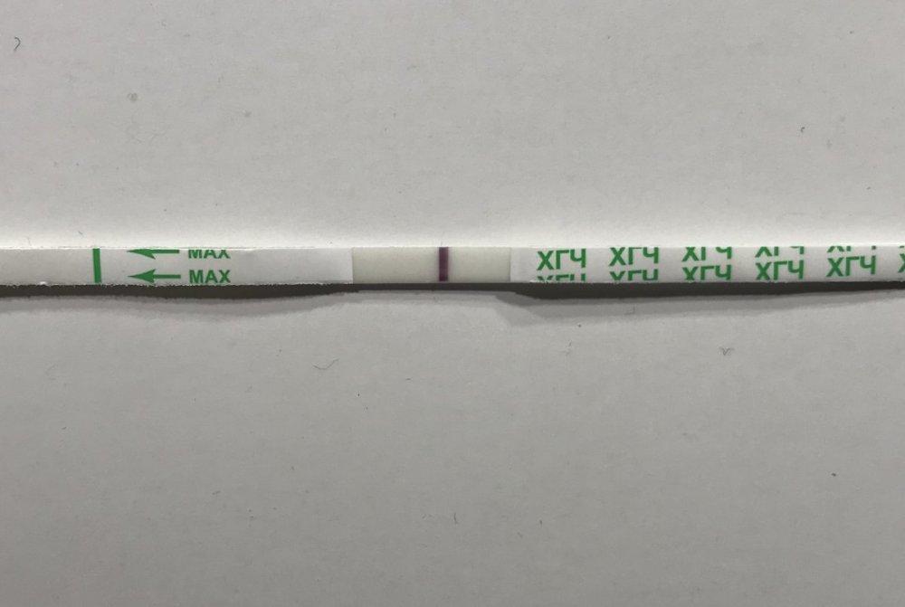 D2485B47-60FD-4410-A90F-0AD8AD677D36.jpeg