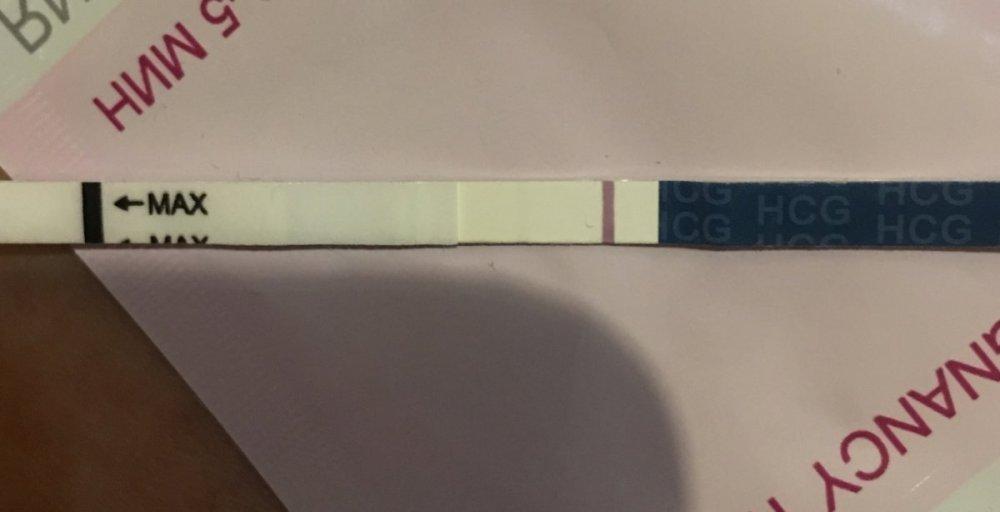 83F448CE-689B-48B9-AE07-6D3CE2024B4F.thumb.jpeg.f4393a7ccfca7732ed13ae6f17c011e3.jpeg