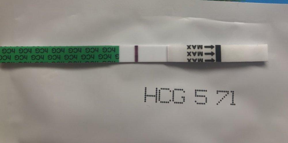 E269690C-2DA1-45A0-BCA9-6AFAAD795B4F.jpeg