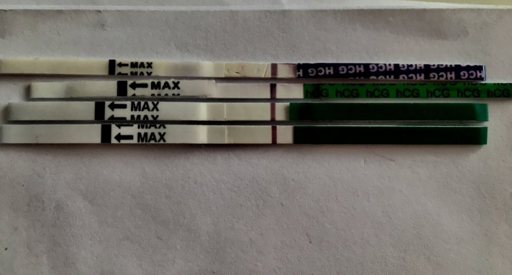 AC351714-108F-479B-AA6A-0A2679224139.jpeg