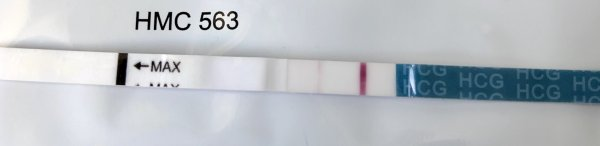эви тест из розовой упаковки