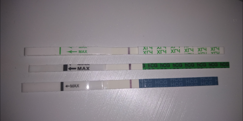 фото тестов