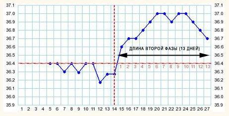 Длина второй фазы цикла на графике БТ