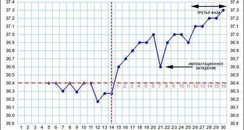 Признаки беременности на графике базальной температуры