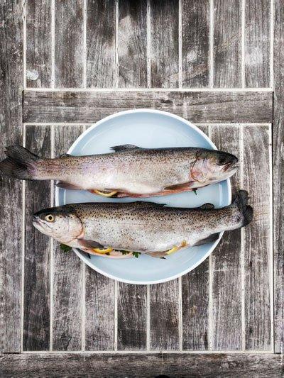 Морская рыба и зачатие