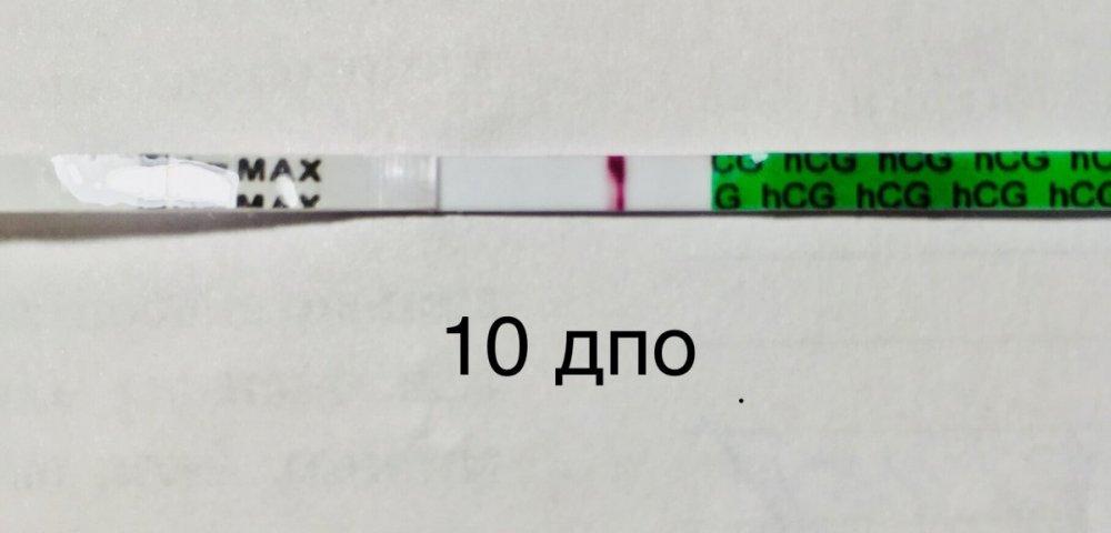 AA8DF4A1-569A-4C8B-A072-076092D9BC1B.jpeg