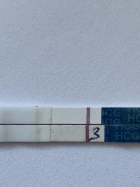 A6CB76C6-2B74-4B62-9216-B33F8047DFF2.jpeg