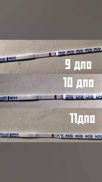 8C8A91AD-FDFD-453C-B325-487C0EC0B269.jpeg