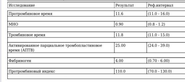 306559B7-8E80-4A99-ACEE-0294FC07ADC4.jpeg
