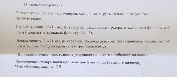 IMG_20201124_151926.jpg