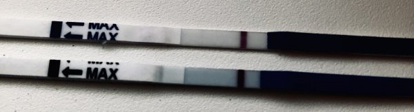 1EA65044-F179-4ACB-95BC-43FD01438147.jpeg